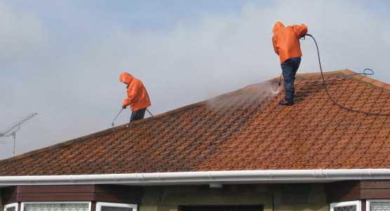 professional window cleaners trinity fl